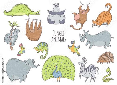 Fototapeta premium Jungle cute animals set with panda, monkey, parrot, koala, chameleon. Vector characters illustration on white background for sticker, postcard.