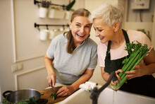 Indoor Shot Of Charming Retired Sisters Cooking Lunch Together At Home Waiting For Guests. Cheerful Mature Woman In Apron Holding Celery, Cooking Vegetable Soup With Her Best Friend, Laughing