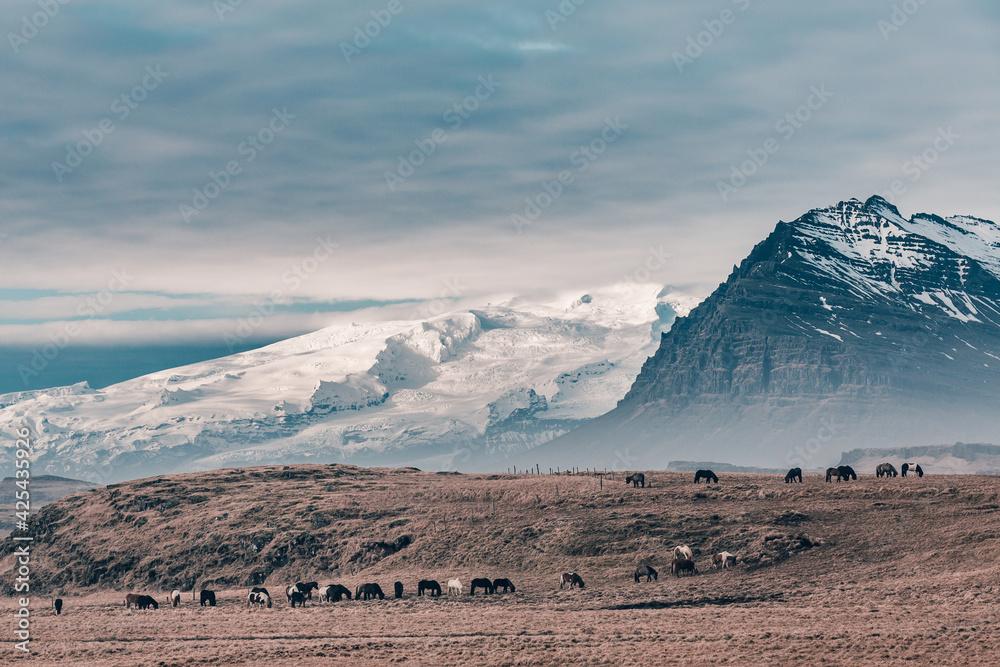 Fototapeta Islandia