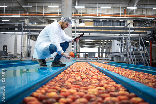 Fototapeta Technologist with tablet computer standing by water tank conveyers doing quality control of apple fruit production in food processing plant. obraz