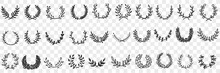 Natural Leaves Ornament And Wreath Doodle Set. Collection Of Hand Drawn Elegant Natural Semicircle Patterns Wreaths Ornaments For Awards Or Interior Decorations Isolated On Transparent Background