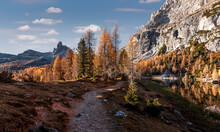 Incredible Nature Landscape. Panoramic View On Spruse Forest In Front Of Mountain Range And Perfect Blu Sky On Background. Location Near Federa Lake . Dolomite Alps. Italy. Picture Of Wild Nature.