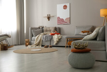 Spacious Living Room Interior With Comfortable Sofa