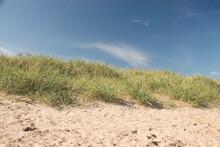 Sand Dune, Bridlington South Beach.