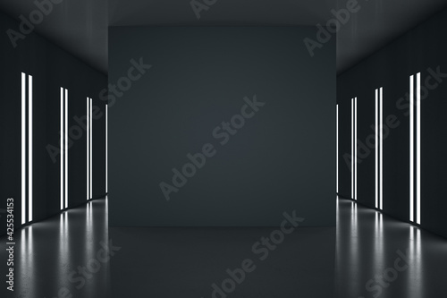 Fototapeta Black partition with copyspace in the center of stylish black room with led lights on walls. 3D rendering, mockup obraz