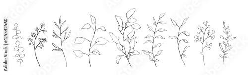 Fotografering Set of botanical line art floral leaves, plants