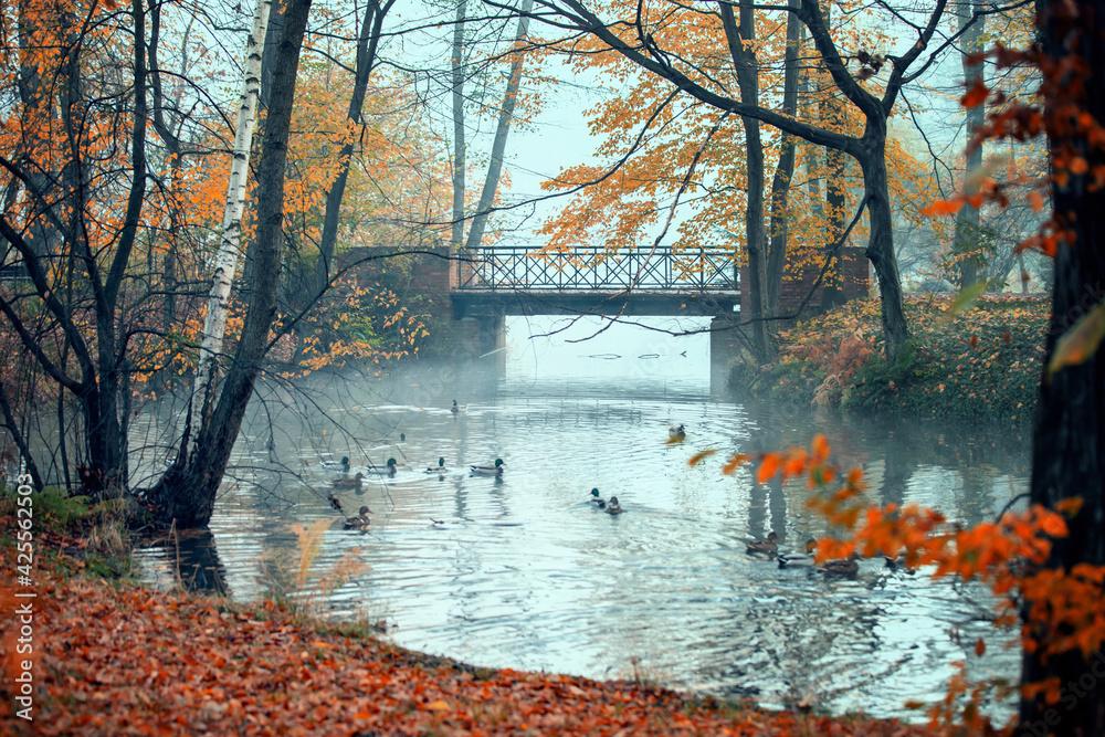 Fototapeta Jesienią malowane
