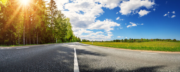 Asphalt road with beautiful trees on the one side and with field of fresh green grass and dandelions on another.