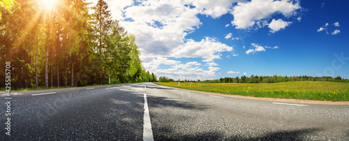 Obraz Asphalt road with beautiful trees on the one side and with field of fresh green grass and dandelions on another. - fototapety do salonu