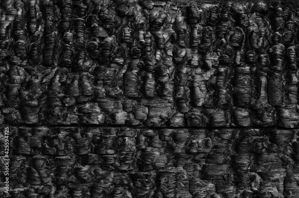 Fototapeta Burned wooden black wall.