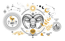 The Astrological Sign Of The Zodiac Is Aries. Realistic Hand Drawing Of A Ram's Head Or Moufflon On A Light Background. Zodiac Characteristic, Stones, Element.