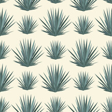 Vector Seamless Pattern With Blue Agave. Tequila Agave Succulent Plant Background, Wallpaper