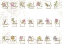 Fifty States Of America With Flower Symbols
