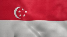 National Flag Of Singapore Blowing In The Wind. 3d Rendering