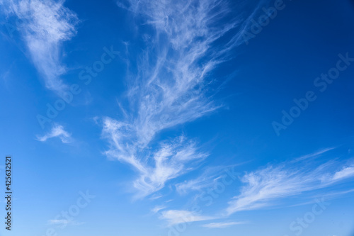 Obraz Nubes cielo azul en dia soleado - fototapety do salonu