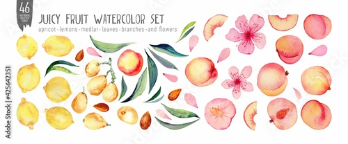 Watercolor fruit set isolation on white. Peaches, medlar and lemons handdrawn fresh fruts, leaves and flowers. Colorfull bright summer set for design textile, wallpapers, print and banners.