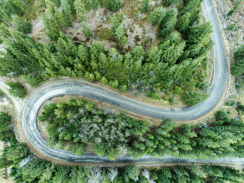 Foto Aerial view of countryside road passing through the green fir forest and mountai