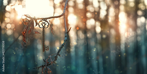 vintage golden key in mystery forest, natural abstract background. magical beautiful key, symbol of secret garden. secrecy, discovery concept