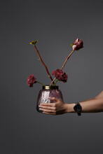 Cropped Shot Of Female Hands Holding Scandinavian Vase With Fresh And Dried Roses. The Stylish Vase With Metal Frame Is Made Of Gray And Pink Gradient Glass And Decorated With Leaves Design.