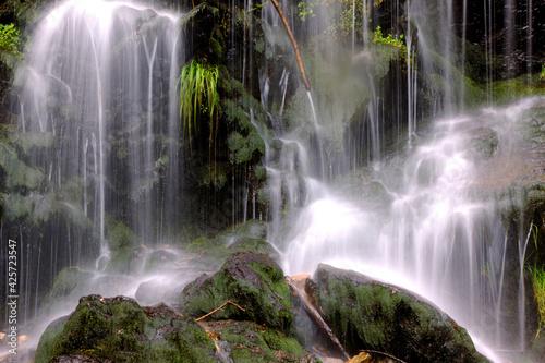 Slika na platnu Fahler Wasserfall am Feldberg im Schwarzwald