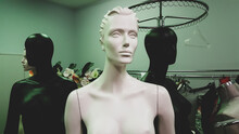 Portrait Of Mannequins Standing In Green Room. White Female Mannequin Doll In The Foreground And Black Females Mannequins Dolls On The Background, Shiny Surface.