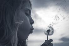 Petite Fille En Train De Souffler Sur Une Fleur De Pissenlit Pour Faire S'encoler Toutes Les Graines Comme Des Parachutes. Un Joli Moment De Tendresse Et De Bonheur Enfantin Au Printemps.