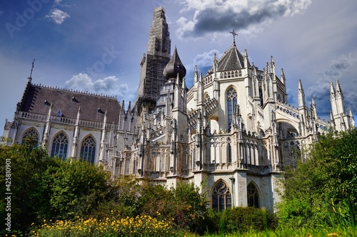 Papel de parede cathedral Antwerp private garden