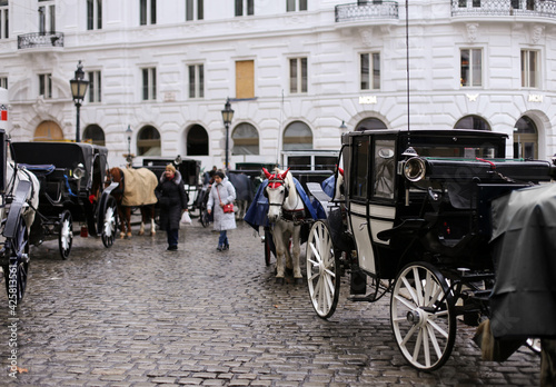Photo Horse carriage in the city