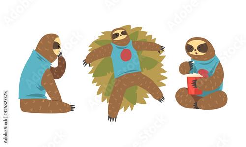 Fototapeta premium Sloth Character Set, Funny Slothful Animal in Various Poses Cartoon Vector Illustration
