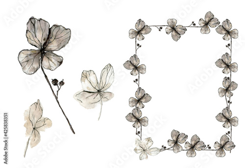 Fotografie, Obraz Decorative frame of hydrangea petals, and single flower watercolor illustration in sketch style, isolated on white background
