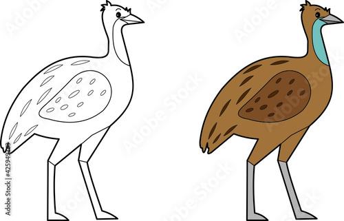 Fototapeta premium Emu bird illustration