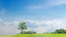 Trees On The Green Slopes And White Clouds In The Blue Sky