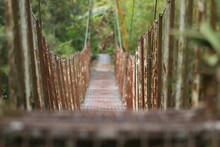 Old Wire Bridge #2