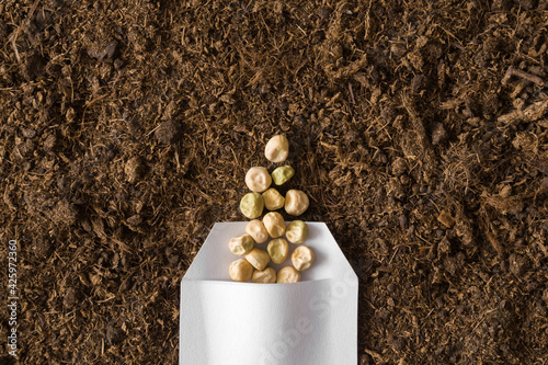 Carta da parati One white opened paper pack of dry pea seeds on fresh dark soil background