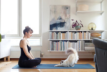 Woman Practicing Yoga At Home With Cat