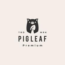 Pig Leaf Hipster Vintage Logo Vector Icon Illustration