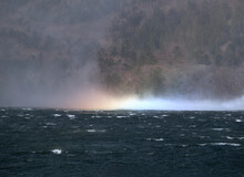 強い風にあおられた湖面に水柱が立つ。太陽の光を受けた水滴が虹を形成していく。虹が出現する瞬間。