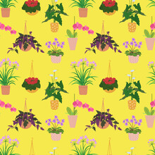 Seamless Pattern With Potted Tropical House Plants In Colorful Flower Pots. On A Yellow Background. Vector Illustration.