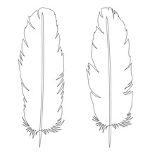 Set  Feathers Graphics Black White Coloring  Vector Illustration