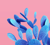 Blue cactus on pink background. Creative design