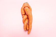 Funny Ugly Twisted Carrot On Pink Background.