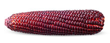 Red Corn Isolated On White With Clipping Path
