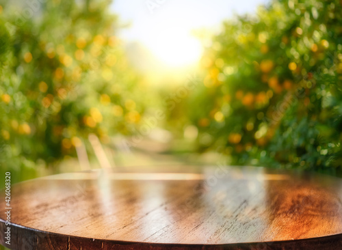 Fototapeta Empty wood table with free space over orange trees, orange field background. For product display montage obraz