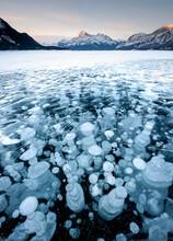 Frozen Methane Bubbles On Lake Abraham, Kootenay Plains, Alberta, Canada