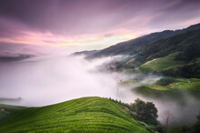 Purple Sunset With Fog Above The Longsheng Rice Terraces, Guangxi, China