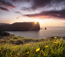 Sunset View On Rising Og Kellingin Sea Stacks With Yellow Flowers In The Foreground, Faroe Islands, Denmark