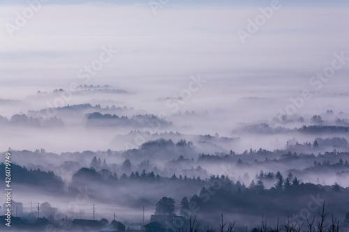Photo 三ツ石森林公園雲海たなびく夜明けの霞ヶ浦