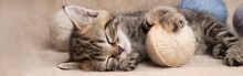 Cute Sleeping Tabby Kitten With Balls Of Wool Panoramic Banner