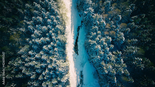 Aerial view of a frozen river through a forest of snowy spruce trees in cold winter