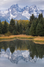 United States, Wyoming, Snow Covered Teton Mountains And Trees Reflected In Calm Lake
